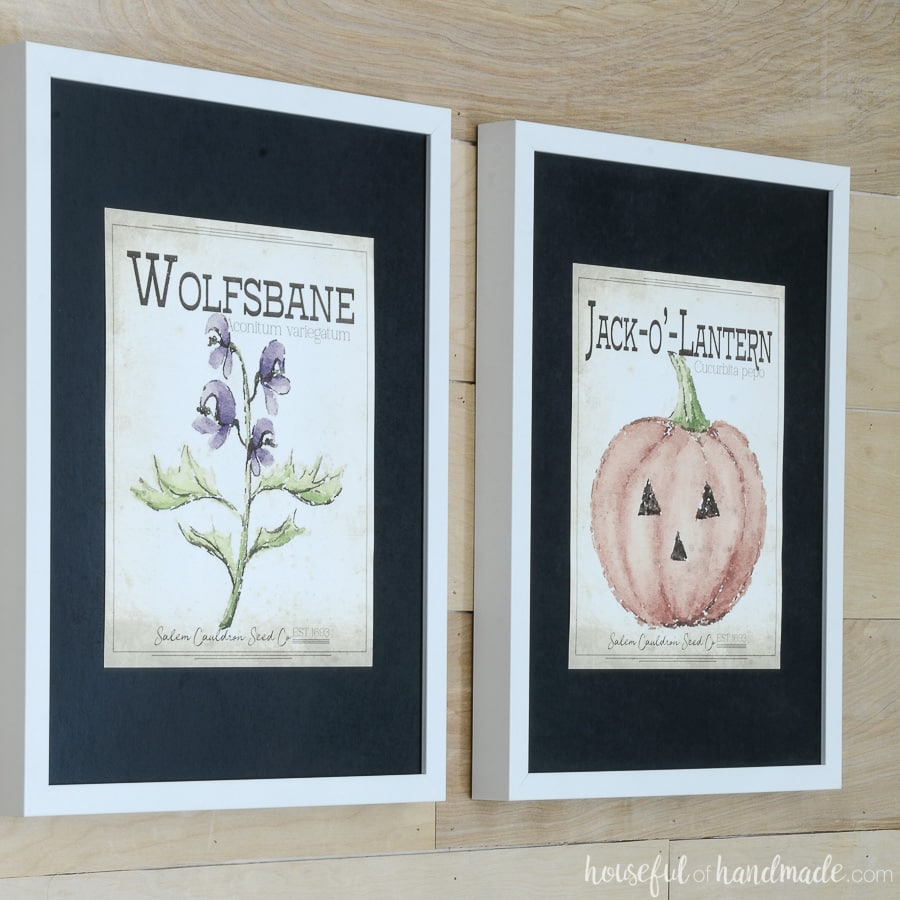 Wolfsbane and jack-o-lantern seed packet art framed with black mats and white frames. The perfect printable Halloween art.