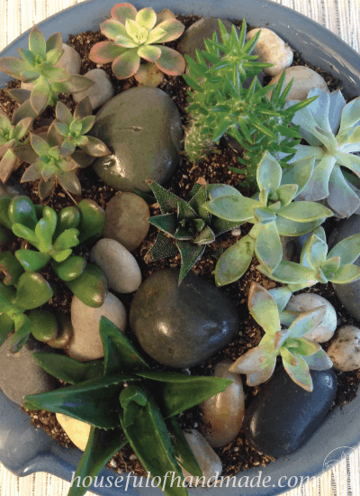 Create a beautiful indoor succulent rock garden for your table. Tutorial on Houseful of Handmade.
