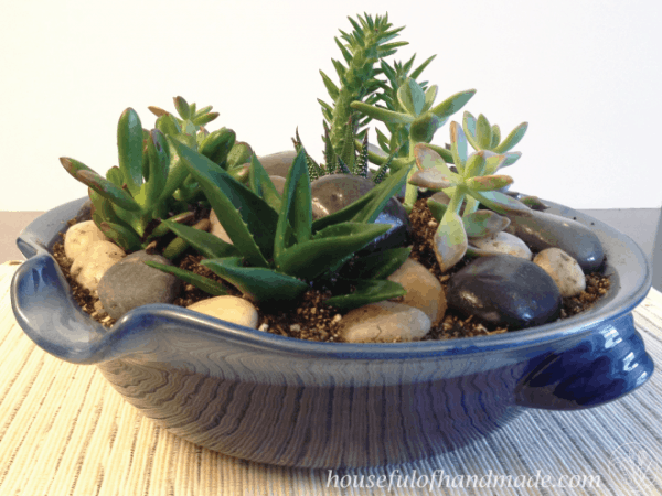 easy indoor succulent rock garden a houseful of handmade