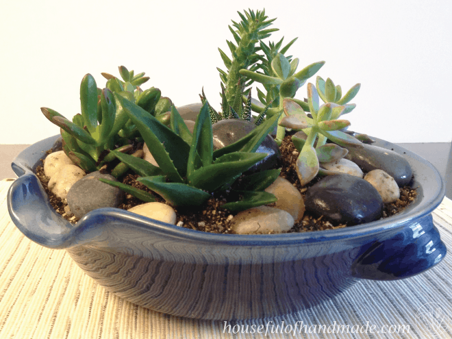 Create A Beautiful Indoor Succulent Rock Garden For Your Table Tutorial On Houseful Of Handmade