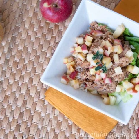 A new twist on the classic pork chops and applesauce. These easy slow cooker pork and apples rice bowls combine a sweet and tangy pork with fall apples. Recipe on housefulofhandmade.com.