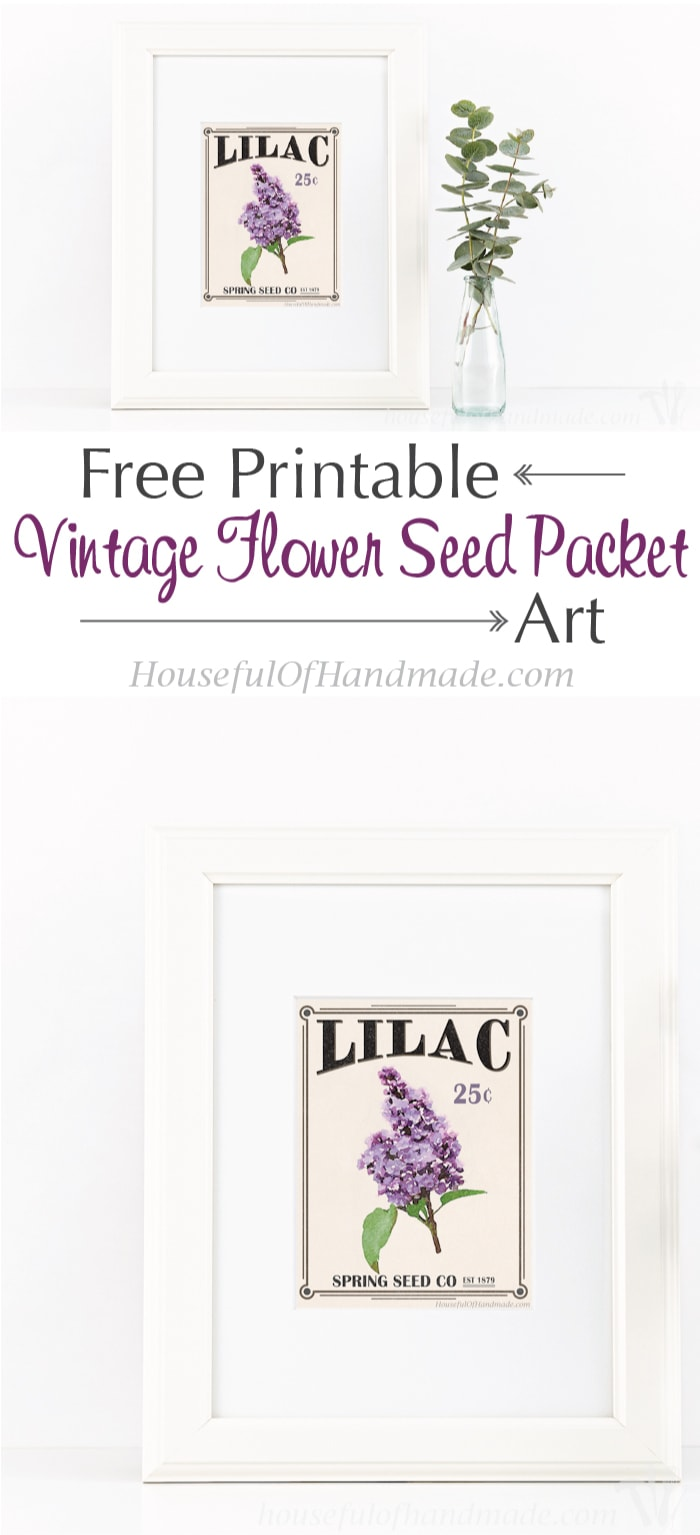 Bring the garden inside with this free printable vintage seed packet art. A beautiful printable 8 1/2 x 11 art print that looks like a vintage seed packet. | Housefulofhandmade.com