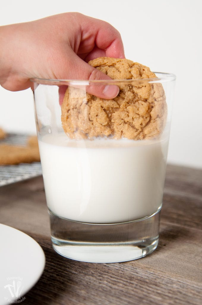 malted peanut butter oatmeal cookie in being dipped in milk