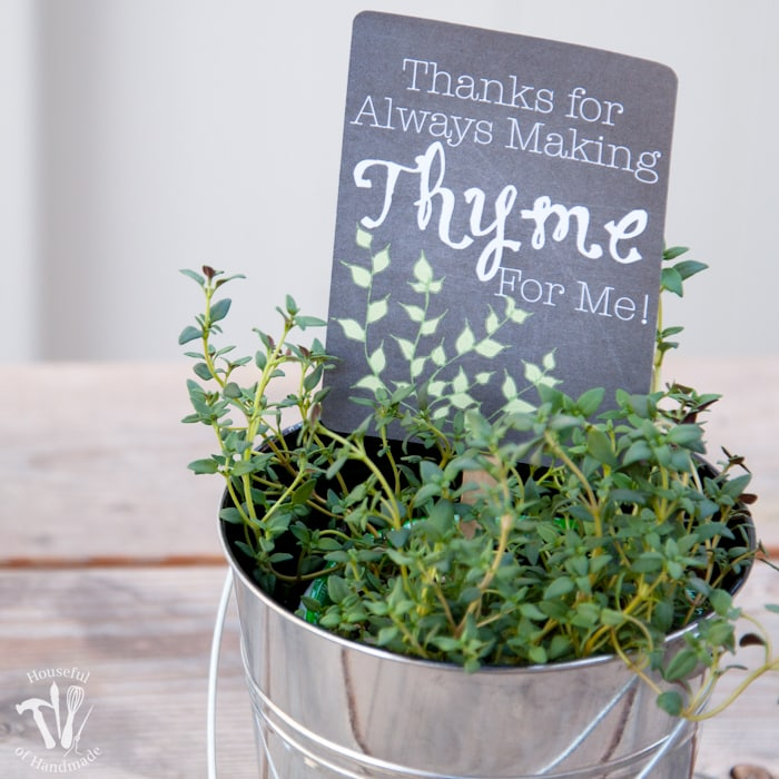 Teacher Appreciation Gift: Potted Herbs with Tags