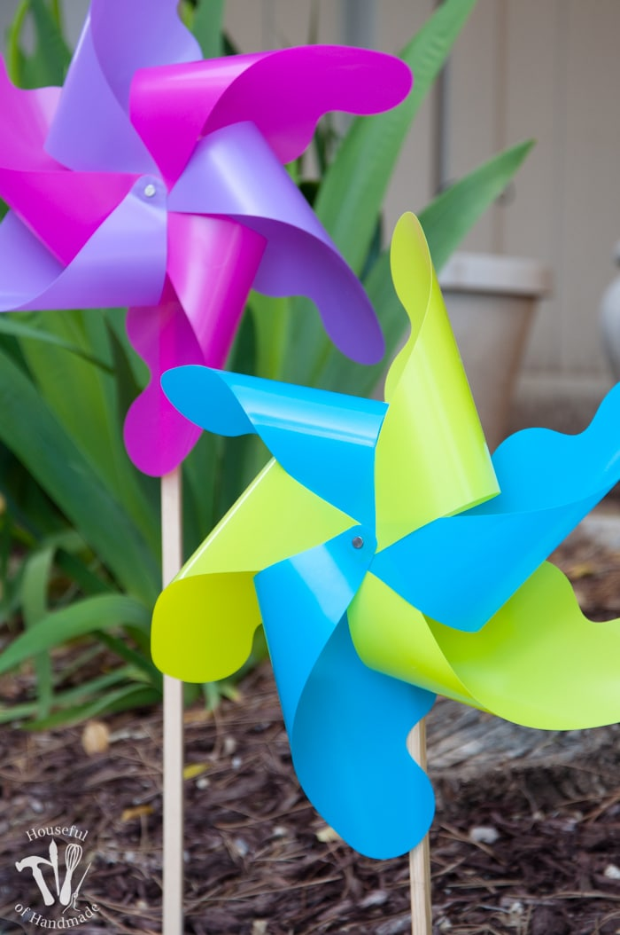 close up of pink and purple pinwheel and yellow and blue pinwheel in the garden.