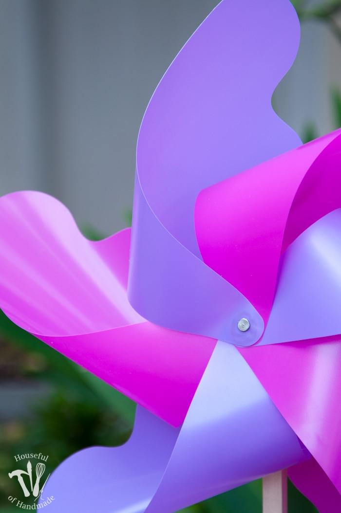 close up of pink and purple pinwheel