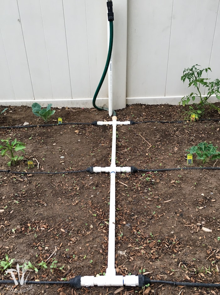 Ever wondered how to install a drip watering system for the garden? It is really easy to do and makes watering your garden so easy. Check out this great tutorial! | newurbanhabitat.com