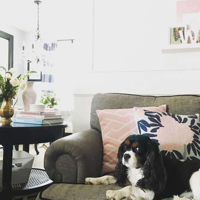 12 Tips for Decorating a Living Room on a Budget - Houseful of Handmade