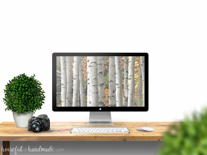 I love seeing the aspen trees turn colors in the fall! Bring the beauty of the fall leaves to your electronics with these free digital backgrounds for September. Download yours today! | Housefulofhandmade.com
