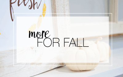 more-fall-header-image