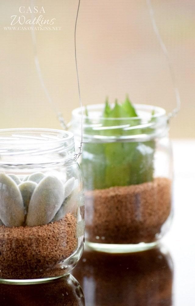 Ways to Upcycle Glass Jars & Bottles: World Market Inspired DIY Mini Succulent Hanging Jars from Casa Watkins Living.