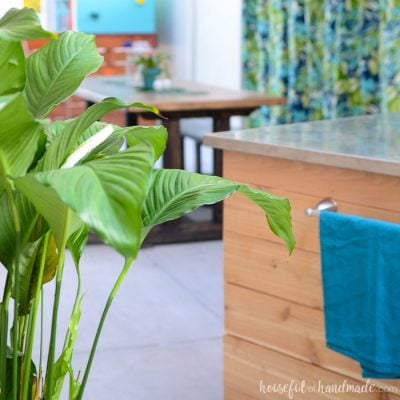 DIY backyard patio in the background with tropical leaves in the foreground.