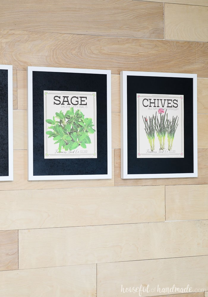 Sage and Chives vintaged herb prints in white frames with black mats. Housefulofhandmade.com