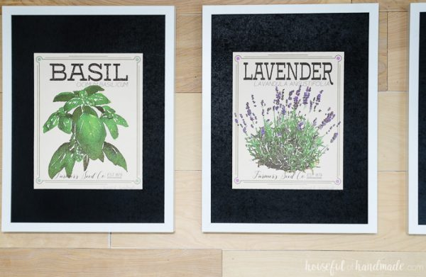 Basil and Lavendar watercolor herb prints in frames with black mats. Housefulofhandmade.com