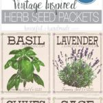 Bring the outdoors inside with these free vintage inspired herb prints made to look like vintage seed packets. Herb prints are a great way to add wall decor to your kitchen or dining room. This vintaged herb seed packet art is an easy way to add a statement or gallery wall to any home. Housefulofhandmade.com