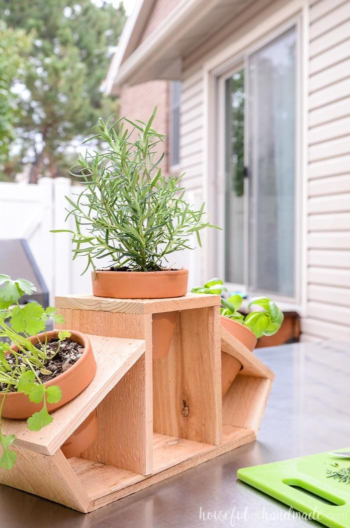 Rosemary, cilantro and basil herbs planted in the 15 minute DIY kitchen herb planter made out of cedar wood. Housefulofhandmade.com