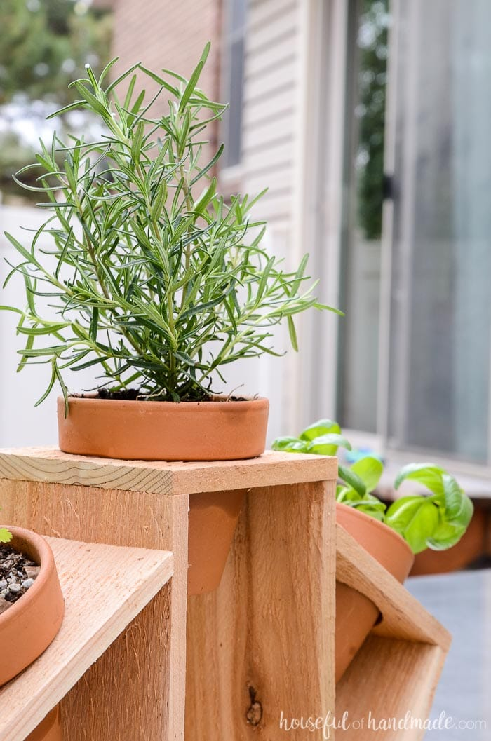 These easy herb garden plans are perfect for creating a simple countertop herb garden. Housefulofhandmade.com