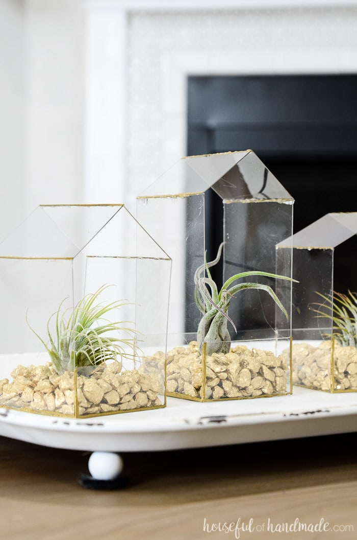 Plexiglass air plant display with gold details.