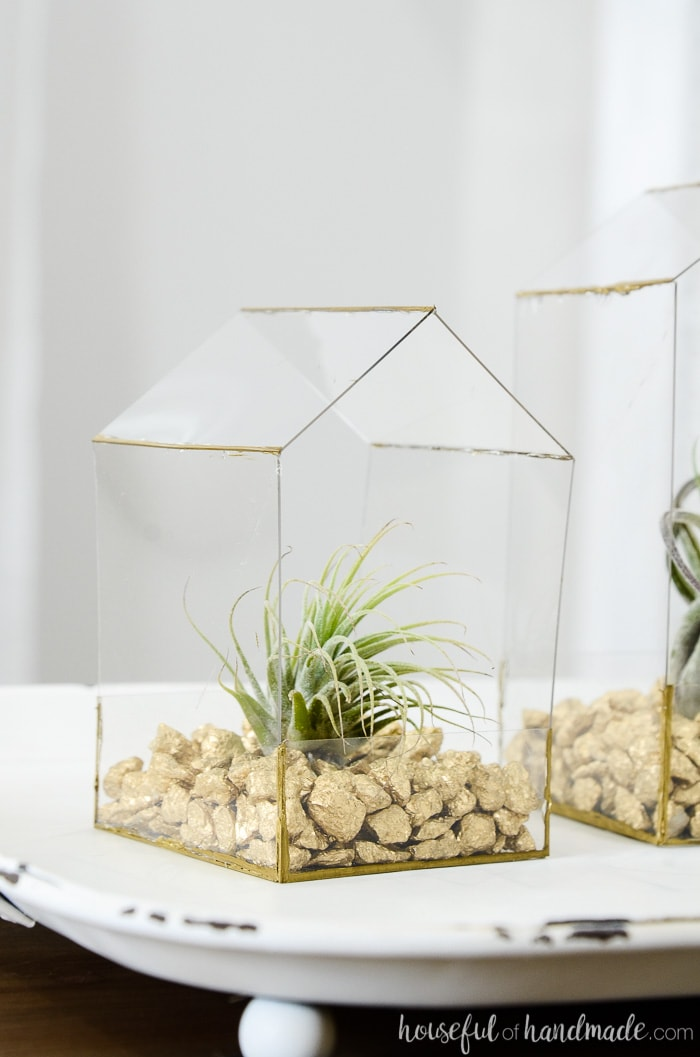 Cute house shaped plant display with bushy air plant planted in it.