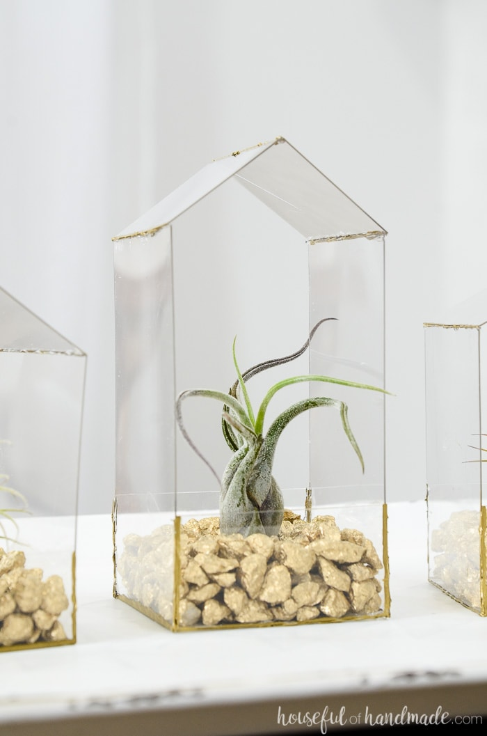 Tall house shaped air plant holder on a table with air plant in it.