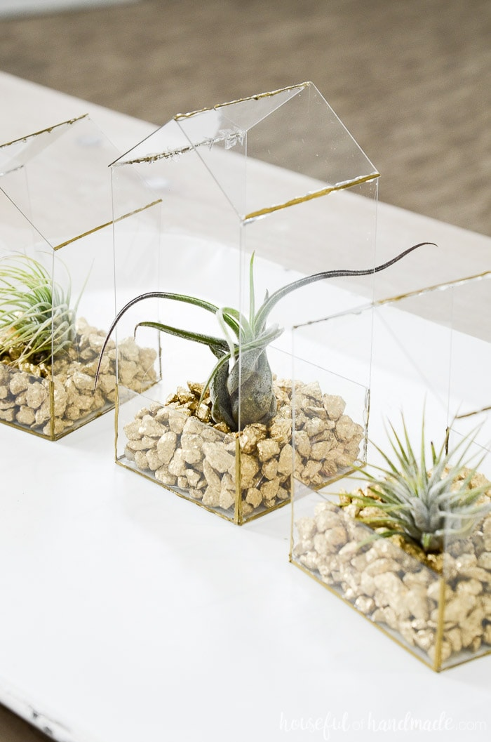 Easy DIY air plant holder made from hot glue and thin plastic.
