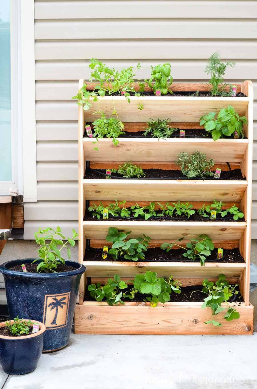 Plant all your favorite herbs without taking up all your space with this easy DIY vertical garden. Made out of cedar and featuring a built in drip system, it is perfect for small spaces. Housefulofhandmade.com