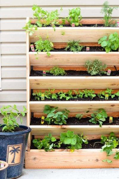 Vertical herb garden made from cedar on the patio.