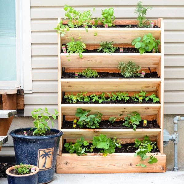 Create a beautiful herb garden on your patio with this DIY vertical garden made out of cedar. This easy to build garden holds lots of plants and includes a build in watering system. Housefulofhandmade.com