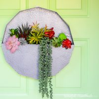 Easy Succulent Wall Planter Craft