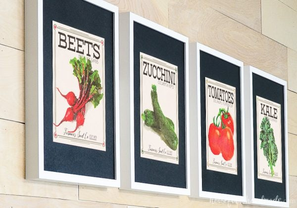 Beet, zucchini, tomato and kale vegetable seed packet prints in white frames with black photo mats.