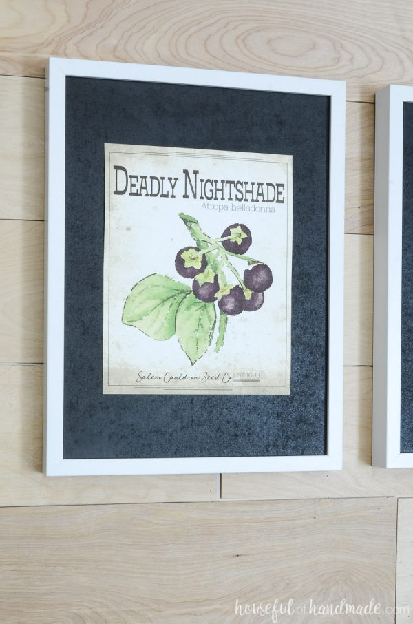 Spooky seed packet art of a deadly nightshade hanging in a picture frame with a black mat for printable Halloween art.