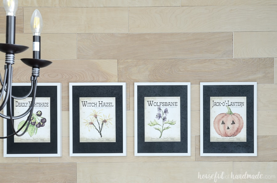 Set of 4 scary Halloween seed packet printables hanging on a wood planked wall. Black mats are perfect for the printable Halloween art.