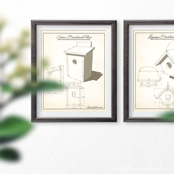 Two frames with vintage birdhouse plans art in them on a wall.