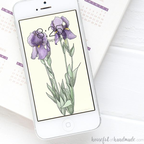 Two hand-drawn iris flowers on a digital iPhone wallpaper.