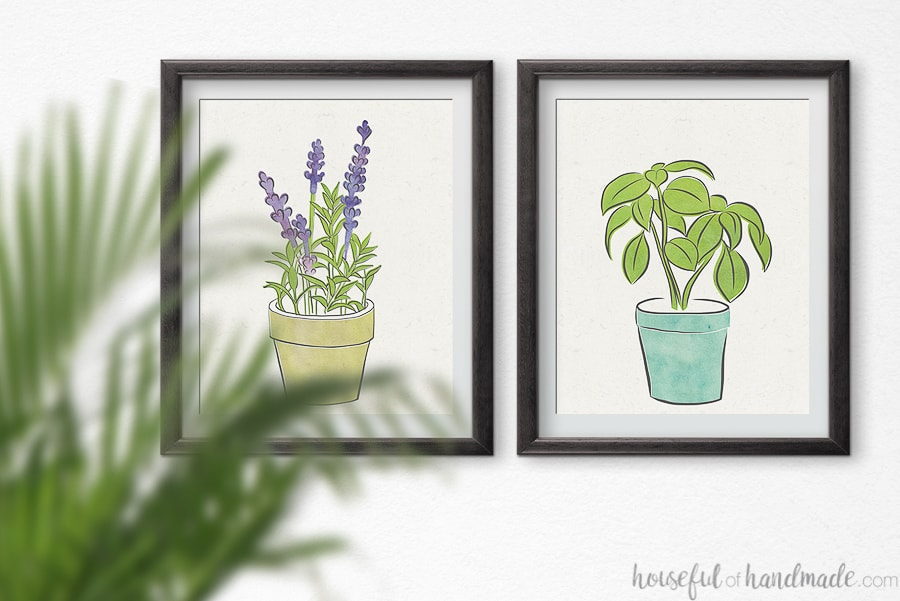 Two herb prints on a wall.