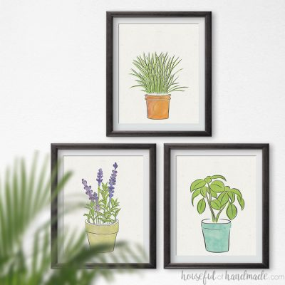 Three picture frames on a wall with herb art prints in them.