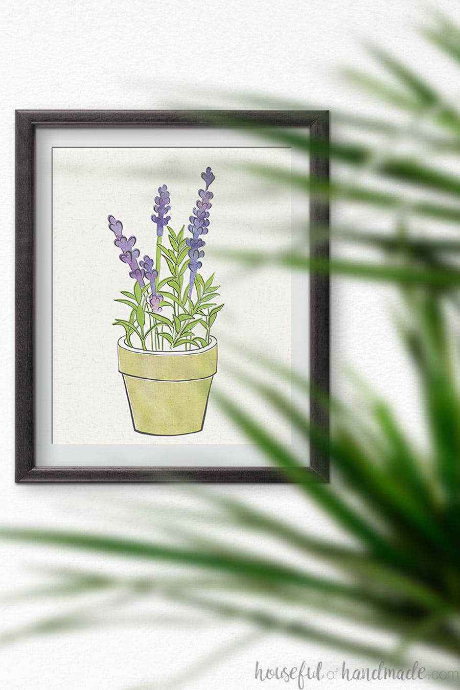 Lavender herb art print in a black frame.