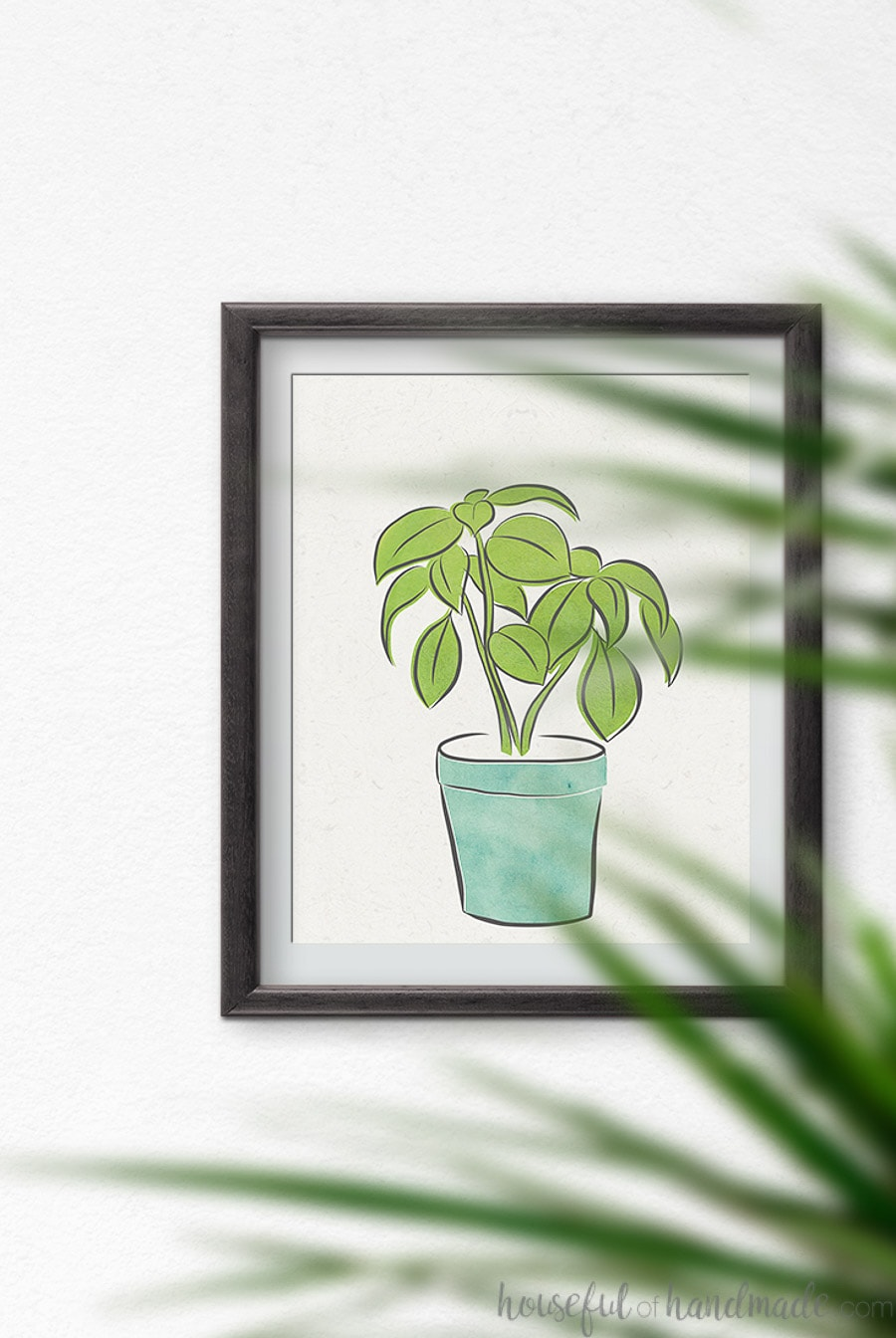Drawing of basil in a blue pot in a frame.