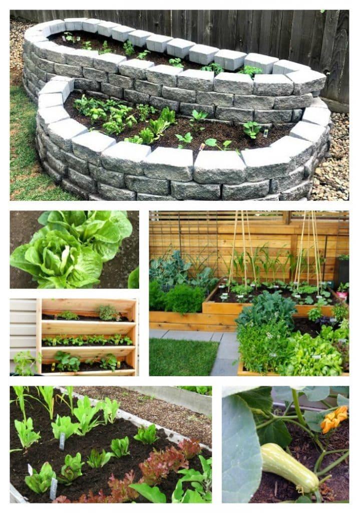 17 Backyard Garden Ideas Houseful of Handmade