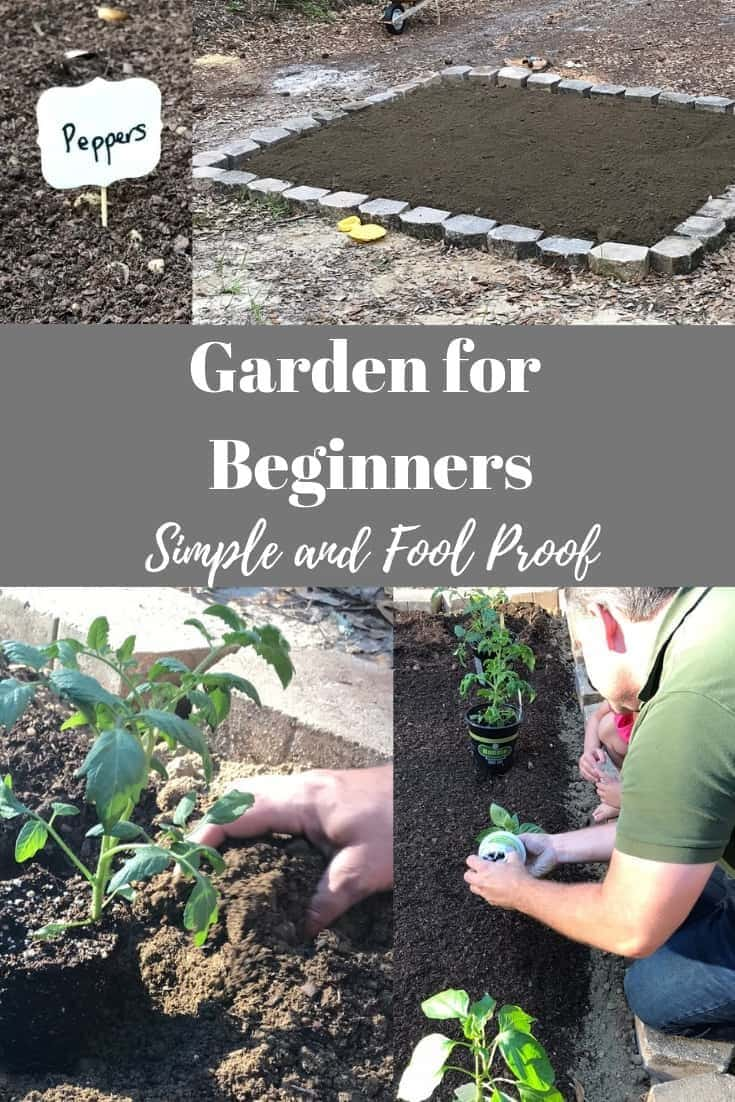 Garden For Beginners; Simple, Easy and Fool Proof