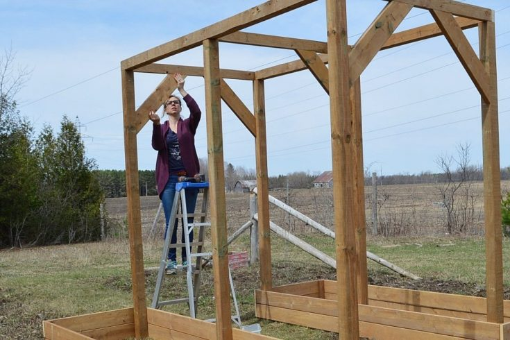 How to make a DIY vegetable arbor