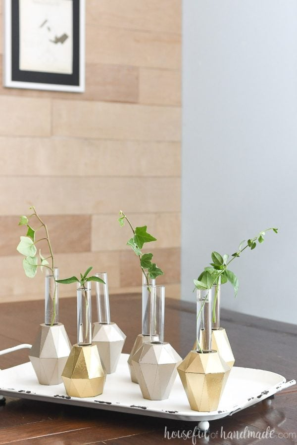White tray with DIY plant propagation vases on it holding clipping of plants.