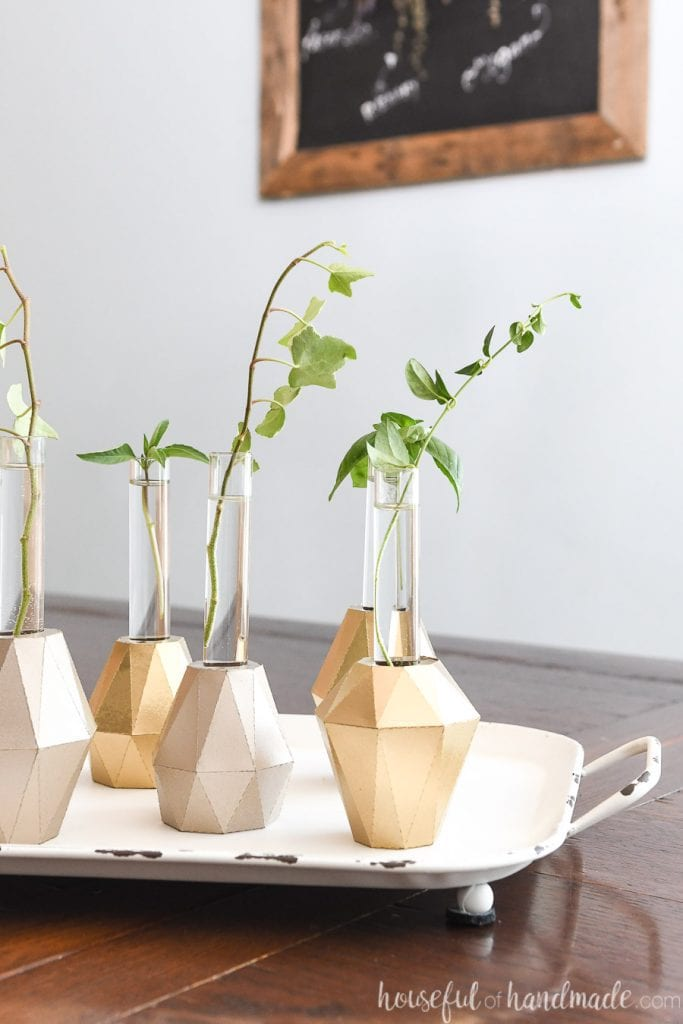 Dining room table with tray holding test tube bud vases with plant clipping in them.