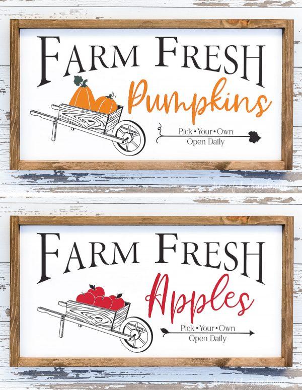 Farm fresh pumpkins and farm fresh apples signs with wheelbarrows full of produce.