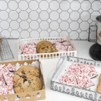 Paper Cookie Trays Cut File