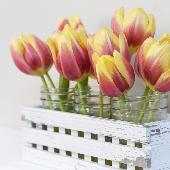 Close up of the tulip blooms in mason jars in a white decorative trough made from paper.