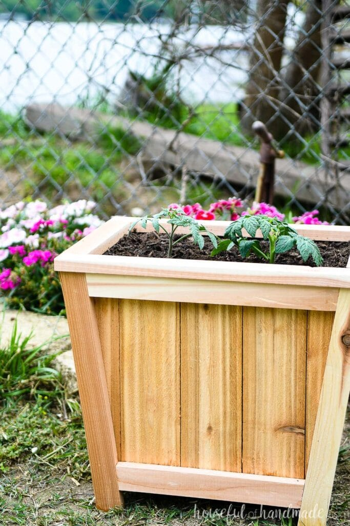 DIY cedar planter on the ground with plants inside.