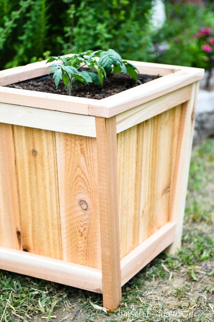 Close up view of the edge of the wood planter made from cedar 1x2s and fence pickets.