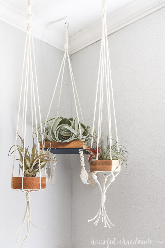 Three macrame and wood hanging air plant holders in the corner.