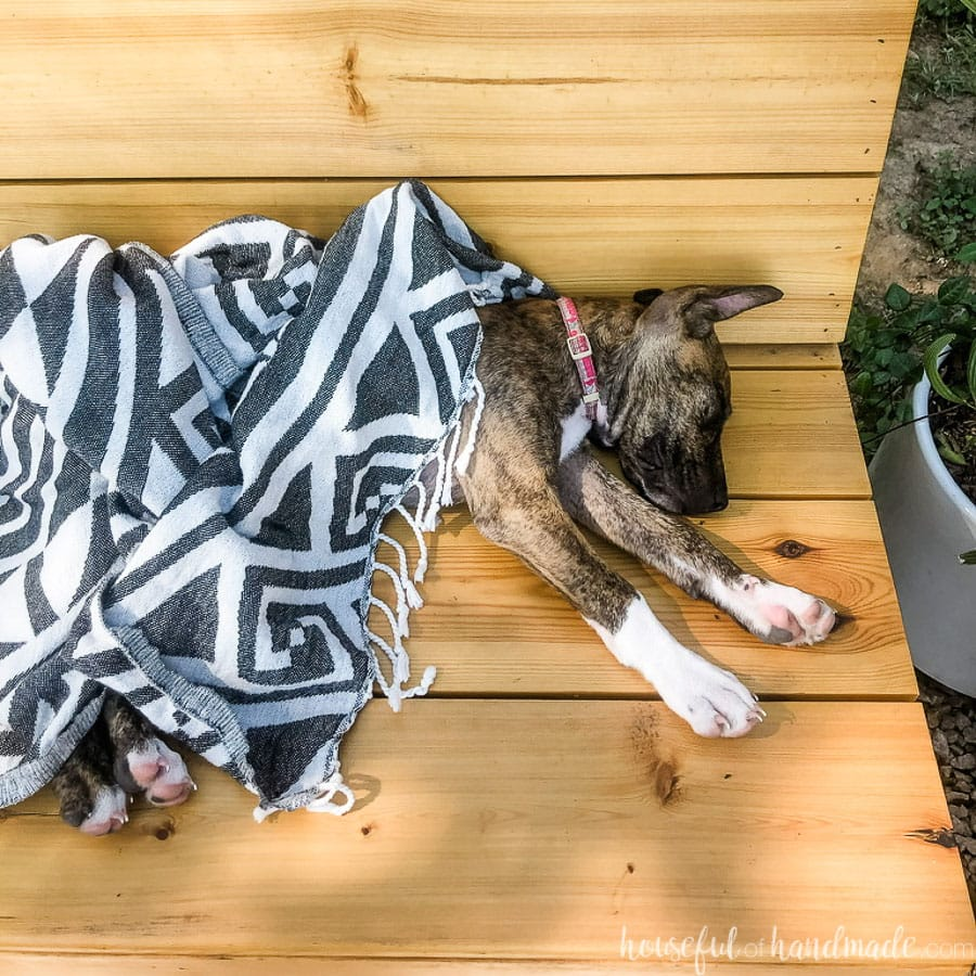 Square photo of puppy sleeping wrapped in beach towel on a fire pit bench.